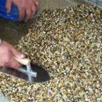 kamenny-koberec-aplikace-3